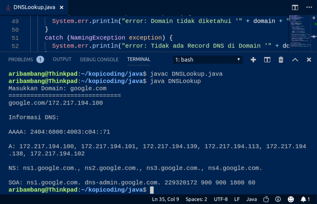 Gambar Hasil Program DNS Lookup di Java