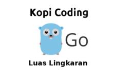 Program Menghitung Luas Lingkaran di Go (Golang)