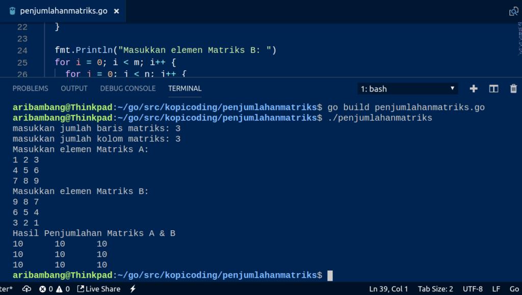 Gambar Hasil Program Penjumlahan Matriks Di Go