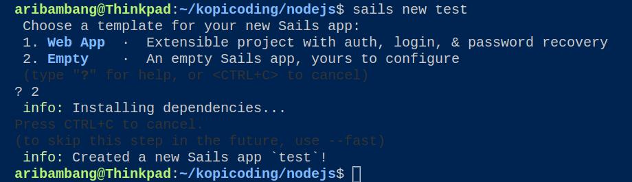 Gambar membuat project dengan Sails.js